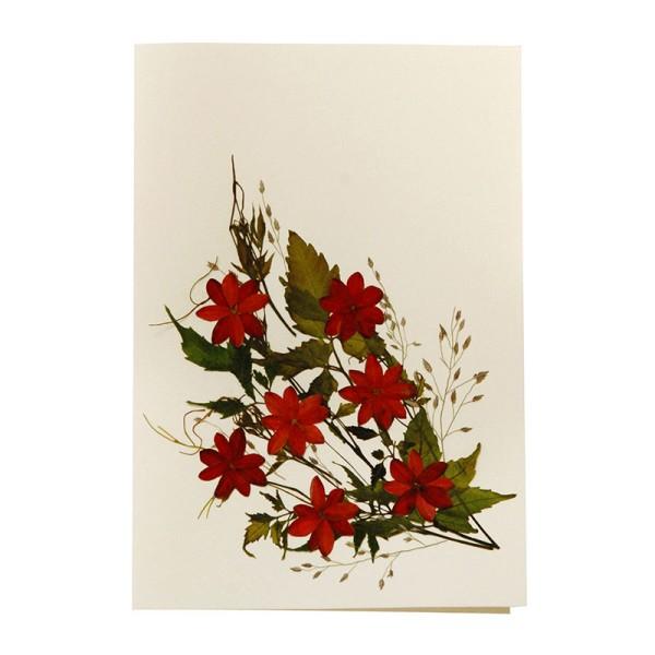 Grußkarte DAHLIA II, Wildblumen
