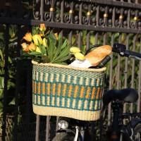Fahrradkorb AMSTERDAM, Steppengras